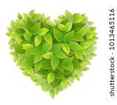 heart symbol made of green...   Shutterstock .eps vector #1013465116
