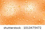 background of water drops of... | Shutterstock .eps vector #1013475472