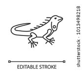 iguana linear icon. thin line... | Shutterstock .eps vector #1013498218