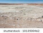 salar de chalviri  also known... | Shutterstock . vector #1013500462