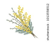 branches of willows and mimosa...   Shutterstock .eps vector #1013558512
