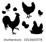 chicken  rooster  chickens and... | Shutterstock .eps vector #1013603578