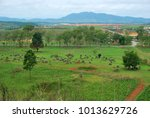 bomb craters from the vietnam... | Shutterstock . vector #1013629726