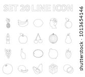 different fruits outline icons... | Shutterstock . vector #1013654146