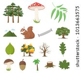 forest and nature cartoon icons ... | Shutterstock . vector #1013663575