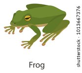 frog icon. isometric... | Shutterstock .eps vector #1013667376