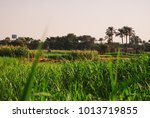 a landscape scene from al dahab ...   Shutterstock . vector #1013719855