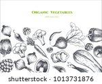 vector frame with vegetables ....   Shutterstock .eps vector #1013731876