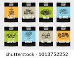beautiful vector hand drawn... | Shutterstock .eps vector #1013752252