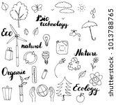 ecology vector doodle set  hand ... | Shutterstock .eps vector #1013788765