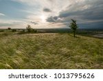 spring landscape with feather...   Shutterstock . vector #1013795626