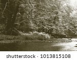 copy of old lithographic... | Shutterstock . vector #1013815108