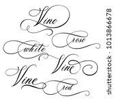 vine  red  white  rose   hand ... | Shutterstock .eps vector #1013866678