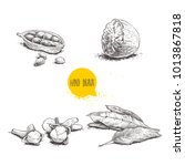 hand drawn sketch spices set....   Shutterstock .eps vector #1013867818
