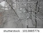 trees in snow at moscow | Shutterstock . vector #1013885776