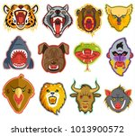 animals portrait vector heads... | Shutterstock .eps vector #1013900572