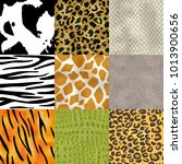 animal skin pattern seamless... | Shutterstock .eps vector #1013900656