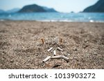 cigarette butts on the beach.... | Shutterstock . vector #1013903272