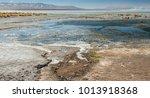 laguna y termas de polques hot... | Shutterstock . vector #1013918368