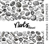 nuts background. seamless... | Shutterstock .eps vector #1013943025