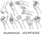 hand gesture collection... | Shutterstock .eps vector #1013976202