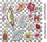 beautiful exotic tropical birds ... | Shutterstock .eps vector #1013993965