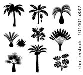 tropical palm trees set. exotic ... | Shutterstock .eps vector #1014015832