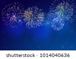 brightly colorful fireworks on... | Shutterstock .eps vector #1014040636