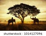 thailand countryside ... | Shutterstock . vector #1014127096