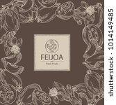 background with feijoa fruit ... | Shutterstock .eps vector #1014149485