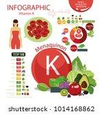 vitamin k  menaquinone . the... | Shutterstock .eps vector #1014168862