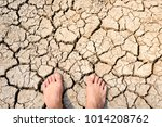 foot on dry cracked earth.... | Shutterstock . vector #1014208762