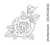 beautiful black and white rose... | Shutterstock .eps vector #1014216616