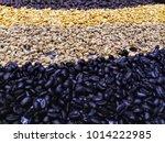 coffee seeds background | Shutterstock . vector #1014222985