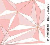 vector marble texture design... | Shutterstock .eps vector #1014236098