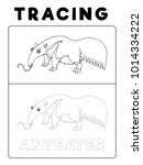 funny anteater animal tracing... | Shutterstock .eps vector #1014334222