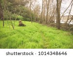 nature trail with retro style... | Shutterstock . vector #1014348646