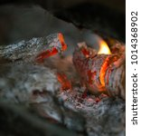 burning logs in the fire | Shutterstock . vector #1014368902