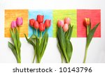 Bunches Of Tulips On Colorful...