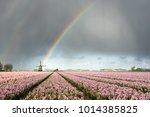 a rainbow under heavy clouds...   Shutterstock . vector #1014385825