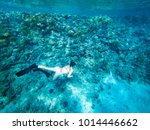 girl freediving beautiful red... | Shutterstock . vector #1014446662
