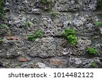 stone wall of old european city ... | Shutterstock . vector #1014482122