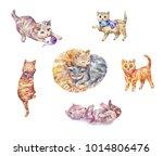 set of watercolor kittens. cute ...   Shutterstock . vector #1014806476