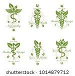 set of caduceus vector... | Shutterstock .eps vector #1014879712