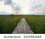 the wooden bridge extends to... | Shutterstock . vector #1014981868