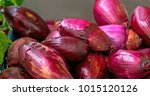 big fresh organic red onion at... | Shutterstock . vector #1015120126