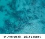background image of the... | Shutterstock . vector #1015150858