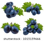 fresh grapes isolated on white... | Shutterstock . vector #1015159666
