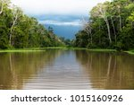 the amazon river  in south... | Shutterstock . vector #1015160926