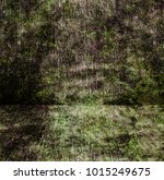 grunge interior background | Shutterstock . vector #1015249675